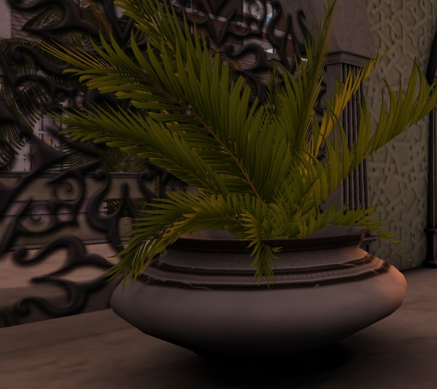 plant_001b