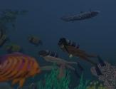 scuba6_001b